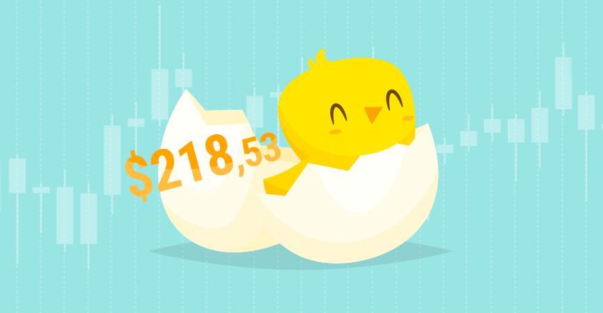 chick_866x450.jpg